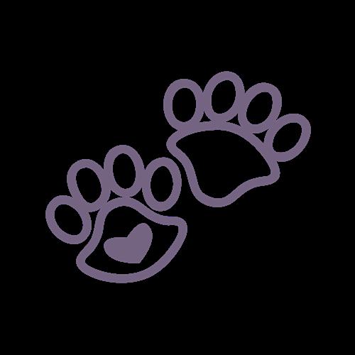 strzyżenie psów dzierzoniów
